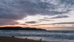 Seascape Sunrise (Merrillie) Tags: uminabeach sand sunrise nature australia mountains nswcentralcoast newsouthwales sea nsw beach clouds centralcoastnsw umina seascape photography water oceanbeach waterscape dawn landscape sky outdoors