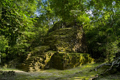 Entre la Selva (sierramarcos14695) Tags: peten guatemala el mirador cuenca complejo la muertita piramide maya clutura antigua estructura mayas vijae travel antepasados selva hojas arboles naturaleza hombre marcas tiempo sony a58 viaje luz solar