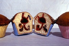 image1 (UNLV Free Press) Tags: muffin snack art anatomy stomach diagram