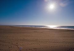 Hello 2017! (marq4porsche) Tags: ocean beach san francisco california united states kodak ektar film color negative light sun star sunstar lens flare sand water wide angle canon eos 3 ef 1635 f4 l 100