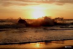 20170120 (josejuanmiranzo) Tags: playa beach sol sun sunset puestadesol ola wave orilla seashore ocean oceano oceanopacífico pacificocean latortuga peru foto fotografia photo photography canonista canon canonist 365 365project jjmiranzo