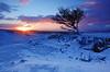ystradfellte tree_2 [explore!] (neath stan the man[on a break]) Tags: nikon 1020sigma landscape trees breconbeaconsnationalpark snow cymru caru sunrise wales outdoors cokin escarpment wilderness