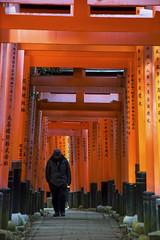 DSC_6057 (okm789911111) Tags: 伏見稻荷神社 千本鳥居 nikon1685