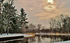 Winter in the Park (photographicimages) Tags: winter park sunlight trees river scenic landscape