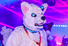 _MG_0688 (Tiger_Icecold) Tags: confuzzled cfz2016 cf2016 furcon furry convention fursuit birmingham party deaddog ddp deaddogparty