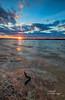 Sunset (Avisek Choudhury) Tags: sunset avisekchoudhury avisekchoudhuryphotography acratechballhead gitzo jordanlake jordonlakenc raleigh canon5dmarkiii canon1635mmf28lii lake landscape