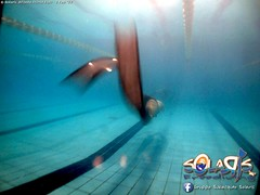 """02 febbraio 2017 - Prove sub & Freediving... • <a style=""""font-size:0.8em;"""" href=""""http://www.flickr.com/photos/138167729@N03/32742048606/"""" target=""""_blank"""">View on Flickr</a>"""