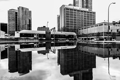 Ride the wave (Endless Reflection Photography) Tags: bellevue downtownbellevue bellevueful bellevuecollection ridethewave puddles puddlereflection soundtransit bellevuepuddles bellevuehistory endlessreflectionphotography cmerchant1 monochrome streetphotography seattle paccar paccarfinancialcorporation paccarbuilding lincolnsquareexpansion glyconstruction bellevuetowers bellevuereflection kemperdevelopment bellevuerain rain