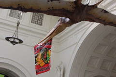 Field Museum (fordc63) Tags: chicago field museum blackhawks pterosaur pteranodon
