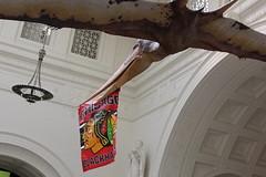 Field Museum (fordc63) Tags: chicago field museum blackhawks pterosaur pteranodon