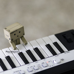 Show me the meaning of being lonely! (mahernaamani) Tags: playing love canon keys happy cool keyboard sad piano 85mm indoor iloveyou miss oman muscat feelings imissyou 143 6d danbo  canon85mm  irig   canon6d danboard   danbolove      irigkeys
