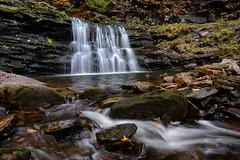 Cayuga Falls (sarah_presh) Tags: usa holiday flow waterfall pennsylvania roadtrip le rickettsglen polariser rickettsglenstatepark nikond7100