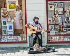 one man & his dog11-1.jpg (TinaKav) Tags: autumn ireland music dog fall weather animals musicians outside nikon seasons performance sunny places september musical buskers guitarist galwaycity 2015 nikond7100 datesyears