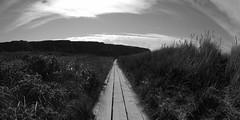 Weg (meistermacher) Tags: light sea bw cloud art nature clouds strand sunrise landscape blackwhite seaside nikon 5 wolken fisheye shore d200 nikkor schwarzweiss landschaft nordsee weiss schwarz wangerooge helgoland weis blackandwhiteonly theunforgettablepictures nikon10 spiekerooge aflickrexplorephoto dirkfietzfotografie