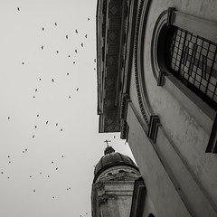 (Minarge) Tags: bird church nature architecture lviv ukraine galicia