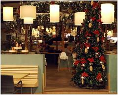 DSCI8504 (aad.born) Tags: christmas xmas weihnachten navidad noel  tuin engel nol natale  kerstmis kerstboom kerst boi kerststal  kribbe versiering kerstshow  kerstversiering kerstballen kersfees kerstdecoratie tuincentrum kerstengel  attributen kerstkind kerstgroep aadborn nativitatis