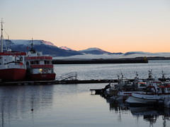 Boats docked at Old Harbour (L e n o r a) Tags: harbor iceland oldharbour