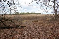 IMG_1838 (davebeaton132) Tags: fence cut trail trespass atv caledon sauriol altonsidetrail
