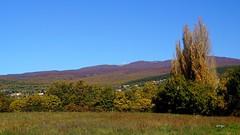 Randonnée pédestre dans la Montagne de Lure et la vallée du Jabron