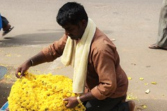 Flower Vendor (bluelotus92) Tags: people india streets flower vendor flowervendor karnataka mysore chrysanthemum yellowchrysanthemum mysuru devarajursmarket devarajaursmarket