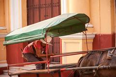 Cuba - Streets of Trinidad (Cyrielle Beaubois) Tags: 2016 cuba cyriellebeaubois décembre trinidad carribeans caraïbes streets cuban cubano horse