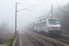 BB26092 - Train 73639 Bobigny>Rennes (Alan Jaffré) Tags: bb26092 bb26000 fantôme 73639 bobigny rennes noyal acigné céréales transcéréales