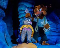 Rabbit and Fox, Splash Mountain (Havoc315) Tags: 2016 vacation disney splashmountain disneyworld rabbit fox darkride nikon d750 tamron 4518 tamron4518