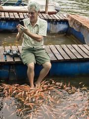 _B054778 Spa treatment.jpg (JorunT) Tags: fotbad fisk srilanka 2016 fiskespa maduganga elvesafari