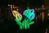 Amsterdam Light Festival 2016-2017 (Roelie Wilms) Tags: tulips tulpen tulp tulpe tulip amsterdam amsterdamlightfestival nederland noordholland
