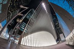 The Oculus (dansshots) Tags: dansshots nikon nikond750 rokinon rokinon12mm rokinon12mm28 wideangle oculus theoculus architecture architectureofnewyorkcity architecturelovers nycarchitecture