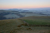The Cold Light of Dawn (Donald Beaton) Tags: uk scotland borders scottish whiteside hill peeblesshire landscape scene scenery view dawn cool frost sunrise canon a7 fields