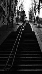 Stairway (chrisroach) Tags: paris france blackandwhite blackwhite bw stairs leadinglines steep urban fall autumn