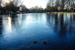 Victoria Park (cristianachivarria) Tags: london victoriapark park royalparks waterscape water lake frozen frozenlake nature projectweather winter