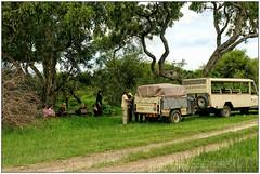 DSC08753PJ_resultat (http://phj.bookfoto.com/) Tags: okavango botswana afrique philippe jubeau