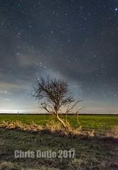 New Castle (montusurf) Tags: tree night sky stars field texas new castle