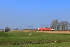 Arriva GTW 2/8 502, Midden-Delfland, 16-03-17 (frank_e186) Tags: trein spoor gtw stadler 28 502 arriva nederland arr zug bahn eisenbahn spoorwegen treinstel railway rail railroad train midden delfland an