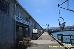 Monterey, California (Narwal) Tags: ‎monterey california ca usa 美國 加州 蒙特雷 monterey municipal wharf ii