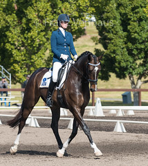 150904_NSW_D_Champs_Fri_4330.jpg (FranzVenhaus) Tags: horses state australia riding nsw newsouthwales athletes championships aus equestrian supporters riders officials dressage horsleypark spectatorsvolunteers