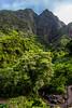 Iao Needle, Maui - 6 (www.bazpics.com) Tags: green heritage wet grass rain rock forest hawaii us moss rainforest unitedstates maui formation needle iao hawaiian hi climate moisture humidity humid wailuku