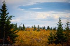 (GrajewskiFoto) Tags: wild canada tourism expedition landscape north manitoba churchill nanuk