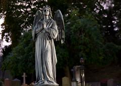 Broken (andreassonfredrik) Tags: broken statue stone angel death evening cemetary peaceful staty ngel kyrkogrden stra strakyrkogrden