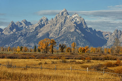 Beauty of Autumn (Happy Photographer) Tags: park autumn trees fall fence grand national teton amyhudechek