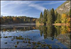 Lago di Cei (aledue) Tags: autumn italy reflection fall reflections italia autunno riflessi trentino cei autofocus lagodicei nikond80 flickraward platinumheartaward aledue