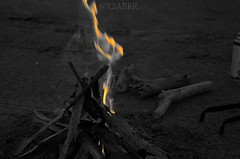 @x3abrr # #colorsplash #colorful #hdr #nature #blackandwhite #ksa #fire # # # # # # # # #sonyalpha #sony #wood  #_ #goodevening  # # @glock999 (photography AbdullahAlSaeed) Tags: wood blackandwhite nature fire colorful sony colorsplash hdr   ksa  goodevening   sonyalpha