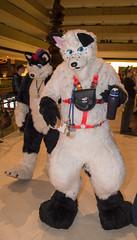 DSC_0094 (Acrufox) Tags: chicago illinois furry midwest december ohare rosemont convention hyatt regency 2014 fursuit furfest fursuiting acrufox mff2014