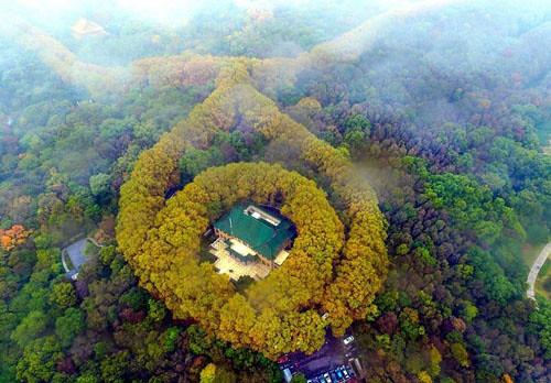 mei-ling-palace-2-6-1282-1448613380