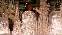 DSCI8539a (aad.born) Tags: christmas xmas weihnachten navidad noel  tuin engel nol natale  kerstmis kerstboom kerst boi kerststal  kribbe versiering kerstshow  kerstversiering kerstballen kersfees kerstdecoratie tuincentrum kerstengel  attributen kerstkind kerstgroep aadborn nativitatis