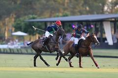 The Maharani Polo Cup 2015
