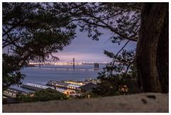 a city walk at twilight (i.v.a.n.k.a) Tags: bridge light sky twilight san francisco long exposure sony alpha ivana hesova
