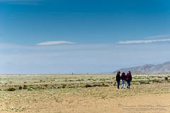 Tres (El ojo etnográfico) Tags: chile caldera atacama desierto florido copiapo desiertoflorido vallenar